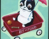 Boston Terrier in a Red Wagon Waiting for a Ride magnet