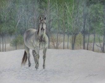 White Stallion 13x10