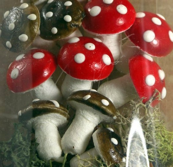 Mushrooms-Red and Brown Variety Pack (218-0117)