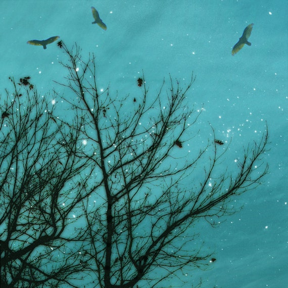 aquamarine bare trees with birds flying against a starlit sky
