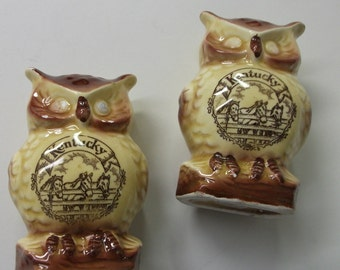 Vintage  Kentucky souvenir Owl Salt pepper shakers