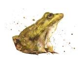 Enchanting FROG Print, frog painting