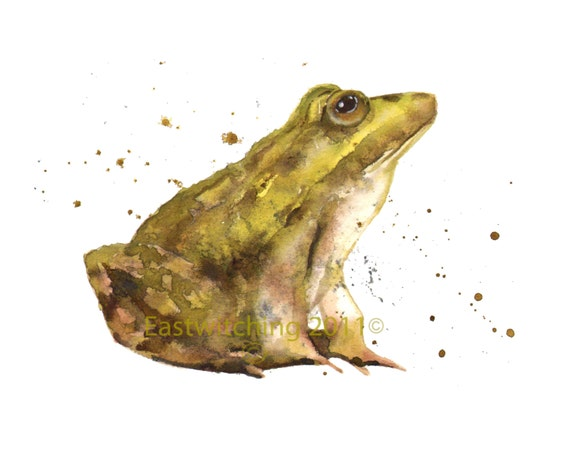 Enchanting FROG Print, frog painting
