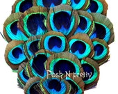 Multi-Eye PREMIUM Peacock Feather pad - 4.75""