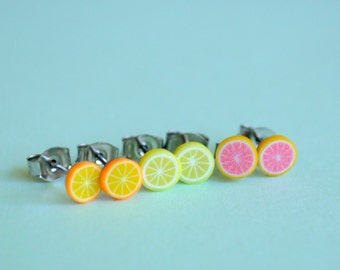 Fruit Slices Orange Lemon and Grapefuit Earring Studs