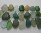 Genuine English sea glass large FROSTY GREENS huge variety of shades and color