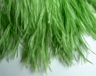 PICCOLO OSTRICH Fringe,  Grass Green     /  2087