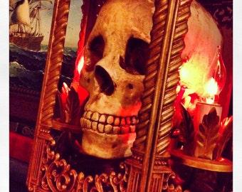Gothic Reliquary Skull Lamp