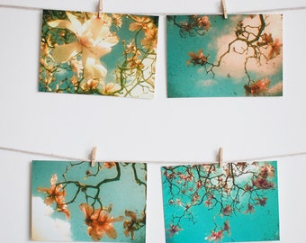 Postcard Set, Spring Flower Photography, Nature Art, Turquoise, Peach, Magnolia Trees, Affordable Art - Magnolia