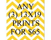 SALE - Any Three 13x19 Inch Prints for 65 Dollars - You Choose The Prints and Colors - Limited Time Only