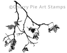 Autumn tree branch- CLING RuBBer STAMP  by Cherry Pie Art Stamps