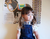 Vintage Cuffed Denim Overall Shorts - Toddler Size 4t