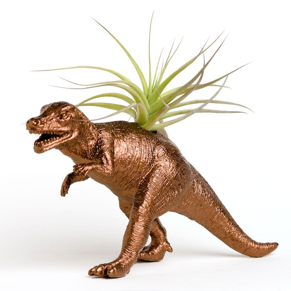 Dinosaur Planter with Air Plant Room Decor, College Dorm Ornament, Tillandsia Plant Pot, Metallic Copper
