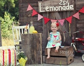 Bunting Banner in CUSTOM Colors, Photo Prop Flags for Wedding, Newborn, Kids' Portraits, Photo Booth Backdrop, Baby Picture, First Birthday