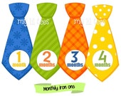 MONTHLY IRON ONS Decals or Monthly Stickers - 12 Monthly iron on heat transfers - for Baby - ties - neckties - baby boy