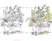 Digistamp Instant Download. Pot of Herbs  Digital stamp and coloured stamp