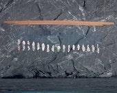 Shipwreck - Atlantic Sea Glass LED Chandelier