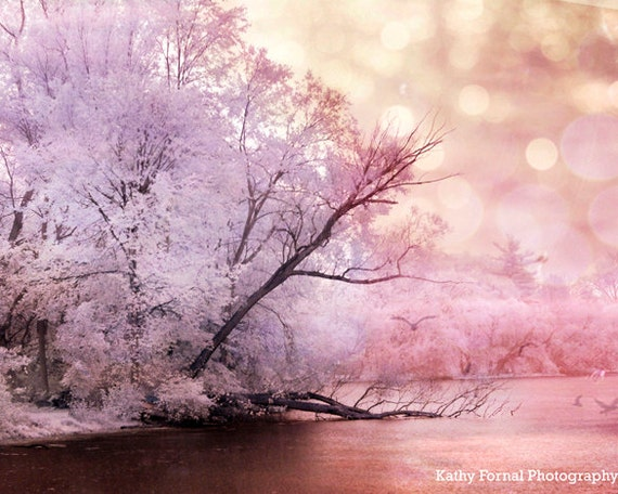 Items Similar To Nature Photography Dreamy Pink Lavender