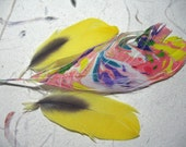 Burst of Color, Parrot Feathers, 2 Natural Sunshine Yellow with touch of Gray and 1 Hand Marbled Feather with Coral, Purple, Sunshine Yellow