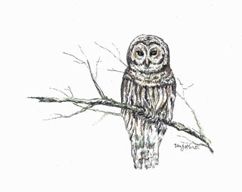 She's a Hoot,  Owl drawing, Mixed Media drawing,  home decor