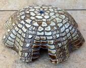 Aquarium Sculpture Abstract Turtle Shell