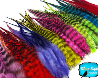 Wholesale Feathers, 100 Pieces - Colorful Short Rooster Hair Extension Feathers Wholesale : 2309