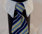 Blue and Yellow Stripes Business Cat Tie