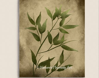 Japanese Home Decor Bamboo Print 8 x 10, Green Wall Decor Nature Inspired Print, Brown Eathtones, Natural