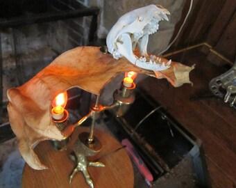 Vampire Lamp
