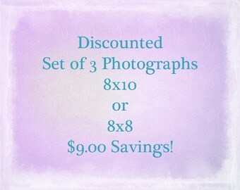 Any Three Photographs 8x10 or 8x8, Discount Set