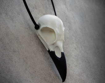 Raven Skull - Fake Bone Reproduction (Black Beak) Necklace - LARP Gift Idea Taxidermy Crow Poe Goth Bird Skull