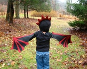 Children's Dragon Wings and Hat set - For Bigger Kids Who Still Soar