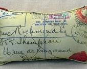 Richmond Esq Rectangular Cotton Pillow