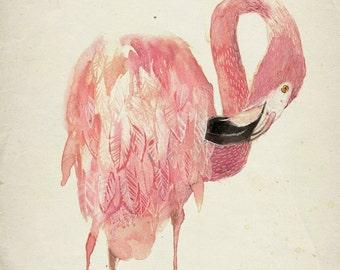 Flamingo Print -  Flamingo Art  - Pink Flamingo Print - Flamingo Giclee Print