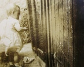 Vintage Photo - Child at the Chicken Coop