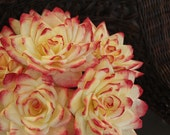 Coffee Filter Roses - Paper Flowers