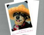 Hot Mama Mother's Day Card - Aye Chihuahua Dog Art - 10% Benefits Animal Rescue