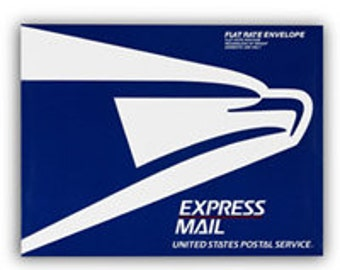 UPGRADE EXPRESS MAIL - upgrade shipping to express mail