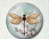 Pocket Mirror Dragonfly  Buy 3 Get 1 Free 264