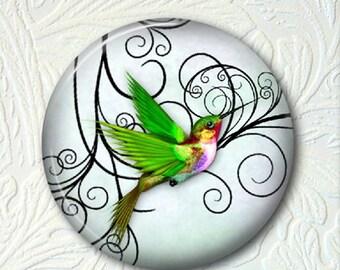 Pocket Mirror Hummingbird   Buy 3 get 1 Free  412