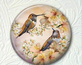 Hummingbird Pocket Mirror - 2.25 Inch - Hummingbird Purse Mirror Black Drawstring Pouch - Buy 3 get 1 Free - 383