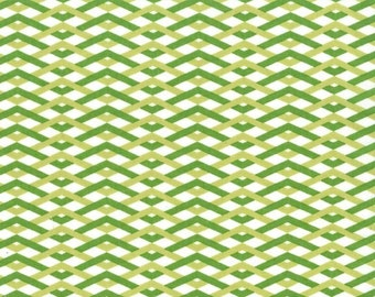 SALE - *** - Technicolor - Braid in Leaf by Emily Herrick- 1 yard - Michael Miller Fabric