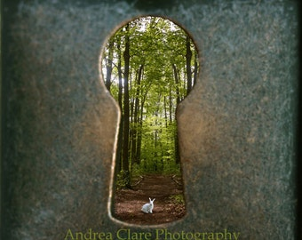 Alice in Wonderland, Follow Me, Fine Art Photograph, Key Hole, Whimsical, Disney, photo, print, surreal, looking glass, story, Looking glass