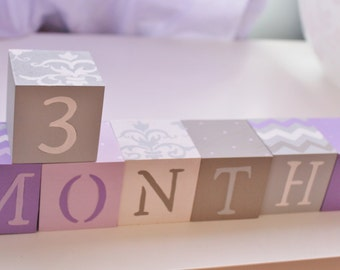 Baby Blocks- Photo Prop for Monthly Baby Pictures- Set of 16 Blocks- PURPLE, GRAY