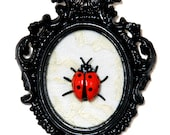 Ladybug - Victorian Framed Object - Wall Art Decor 3x4.5in