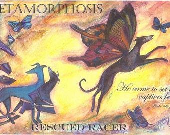 Greyhound Rescue Art:  METAMORPHOSIS, Rescued Racer I