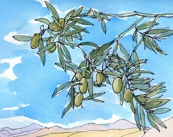 Olive Branch Greece art print from an original watercolor painting