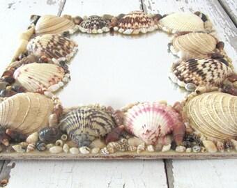 Vintage Seashell Mirror
