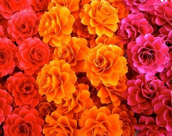 The Rosetta Paper Flowers - Custom Colors - Pack of 10 - Made To Order