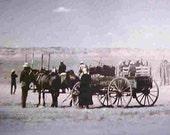 NAVAJO Round-Up..Greasewood, Arizona--Circa 1949--Photo taken from ORIGINAL GLASS Slide